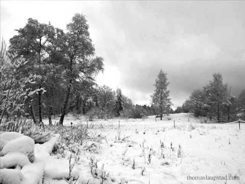 Regina Spektor:  Twenty Years of Snow